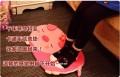 韩版可爱动物防滑垫