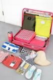 鞋子/杂物/化妆品/衣物防水手提包